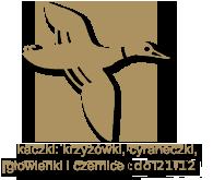 kaczki-krzyzowki cyraneczki gowienki czernice4