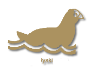 lyski1