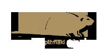 pizmaki1