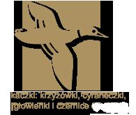 kaczki-krzyzowki cyraneczki gowienki czernice2