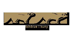 tchorze kuny1